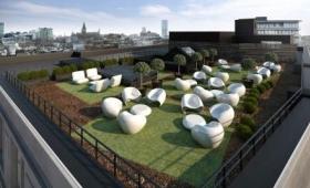 structure de toit vert